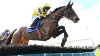 Fairyhouse report: Jordan Gainford makes it two from two in the paid ranks on Mt Leinster Gold