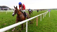 Amateur riders to sit out Cheltenham Festival