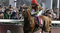 Orfevre drawn in stall eight for Arc