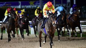 Dundalk tips: Punters should lean towards Tower Of Pisa