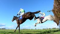 Thurles report: First double leaves David O'Brien feeling like 'a proper trainer'