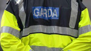 Garda under parallel criminal and           disciplinary investigations