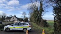 Manhunt underway after brothers killed on north Cork farm