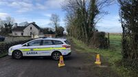 Manhunt underway after brothers murdered on north Cork farm