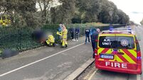 Fire brigade come to aid of person impaled on fence at Phoenix Park