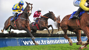 Punchestown tips: Cavallino poised to get off the mark