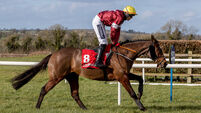 Keith Donoghue on Tiger Roll finishing last in The Ladbrokes Ireland Boyne Hurdle 21/2/2021