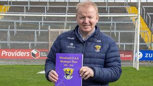 Wexford chief calls on Sport Ireland to help kids return to clubs