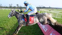 Gowran Park report: Remarkable Bachasson romps to another success