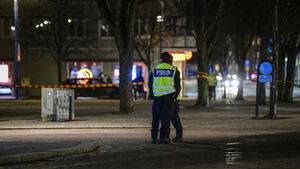 Swedish police probe 'terror attack' after axe-wielding man injures eight