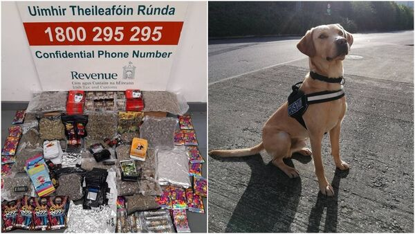 Herbal cannabis, cannabis oil, butane honey oil and other items seized in Dublin this afternoon. Also pictured is detector dog, Bailey. Picture: Revenue