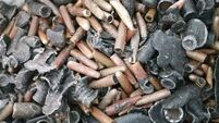 Thousands of bullets uncovered on East Cork beach
