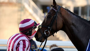 Mitchouka swoops late to grab the glory at Leopardstown