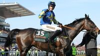 Grand National winner airlifted to hospital