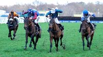 Denise Foster saddles three challengers as Paisley Park heads 15 seeking Stayers' Hurdle success