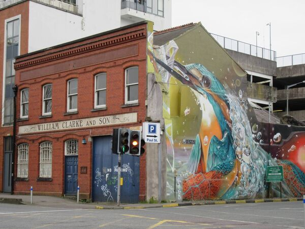 The Kingfisher mural on Lavitt's Quay, Cork. Picture Ethel Crowley