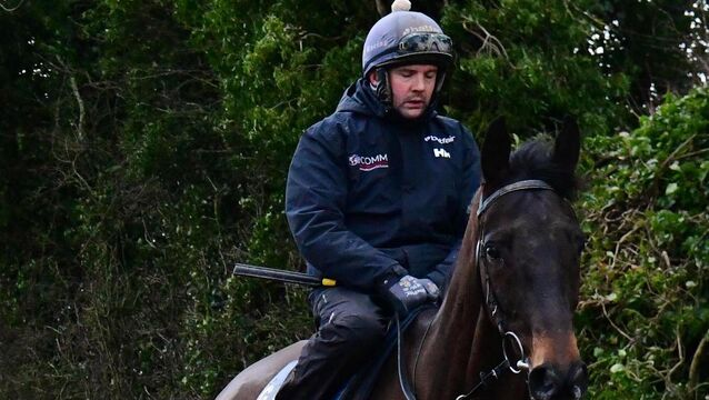 <p>Simon McGonagle after Galloping at Gordon Elliott's Cullentra House Stables. Picture: Healy Racing</p>