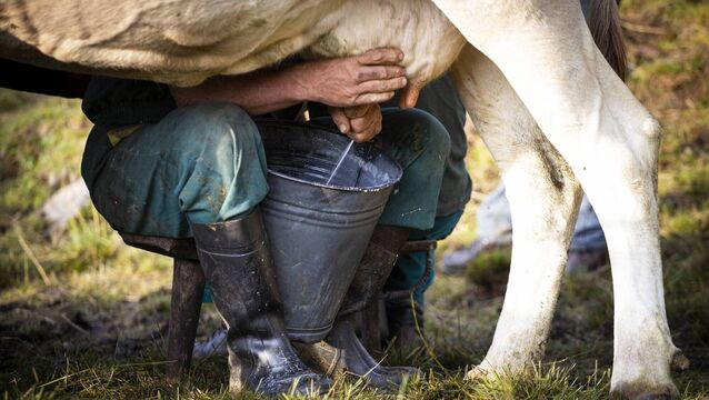 <p>Appliance of Science: Cows do it, we do it, bats and dolphins do it too; we all produce milk to nourish our newborn; it's what makes us mammals. It turns out that milk-making might not actually be completely unique to us mammals.</p>