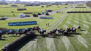 Our horse-by-horse pinstickers' guide to the Aintree Grand National