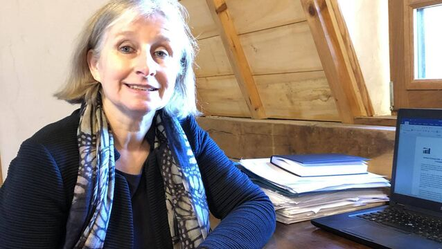 <p>Prof Ella Arensman, Professor of Public Mental Health at UCC, said that although there was no rise in suicide in the first months of Covid-19, we must be vigilant regarding long-term negative impacts of the pandemic.</p>