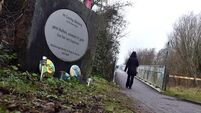 Calls for full investigation into deaths at Tuam and Bessborough Mother and Baby Homes