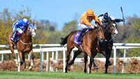 Lope Y Fernandez books Lockinge spot with Leopardstown victory