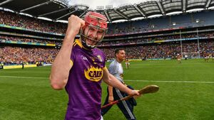 Paudie Foley opts out of Wexford hurling panel for 2021