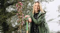 Kathryn Thomas: I can't wait for Ellie to have the experience of a play date with all of her friends