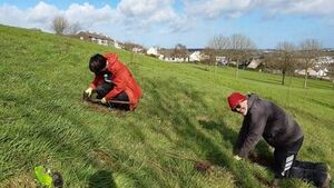 Cork's northside gets a Groovee new Grove as hundreds of native Irish trees planted