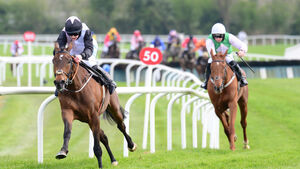 Rachael Blackmore moves to within seven of Paul Townend at top of jockey's championship