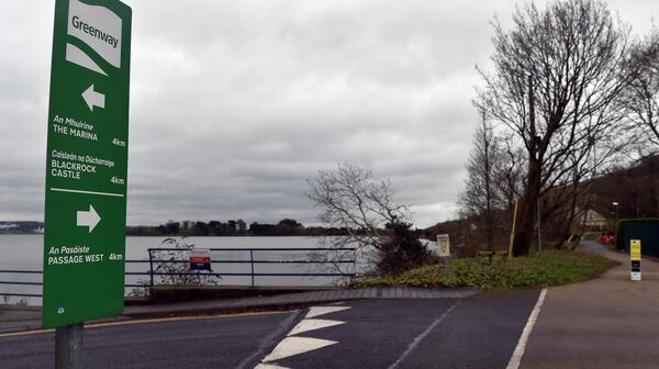 Garda submission argues against routing the Lee to Sea greenway upgrade between Harty's Quay and Hop Island along the southern shores of the Douglas estuary, behind houses at Island View and St Gerard's Place. Picture: Eddie O'Hare