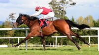 Gowran Park report: Mighty Blue dominates under fine ride from Dylan Browne McMonagle