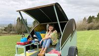 Wild West cat hotel and chic camping pod wow DIY judges