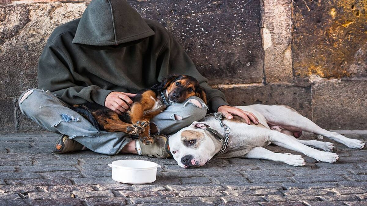 38 homeless deaths recorded in first three months of the year