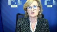 Ireland not being singled out over tax in EU Covid fund, Commissioner says