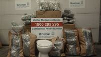Revenue seizes €500k of cannabis in consignment of toilets