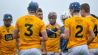 Antrim v Clare - Allianz Hurling League Division 1 Group B Round 1