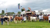 2021 Tullamore Show cancelled