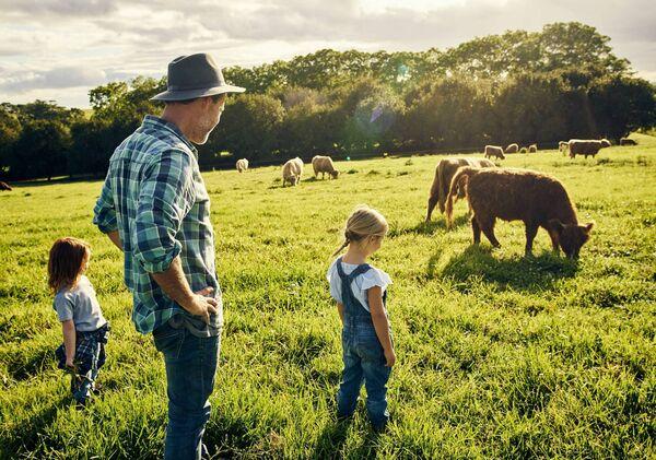 Le secours agricole et le redressement des biens commerciaux ont tous deux leurs propres conditions à remplir pour bénéficier de l'allégement correspondant.