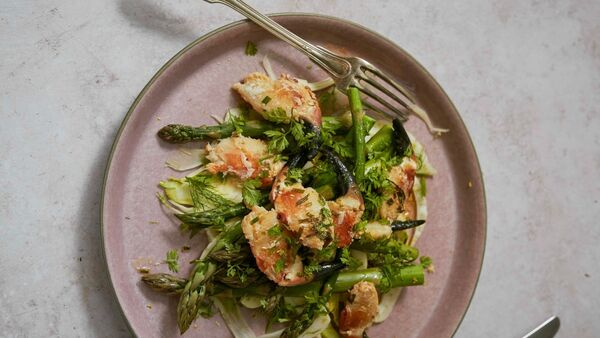 Crab claw salad with asparagus and fennel