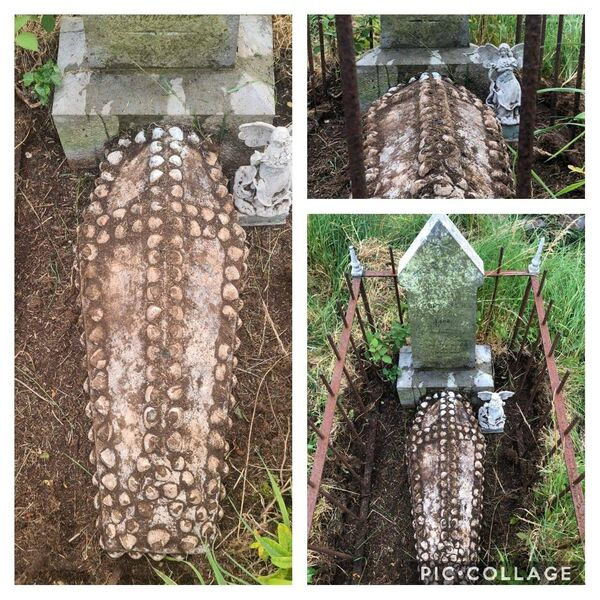 A grave uncovered by sheep at St Matthew's graveyard in Crosshaven in Cork.