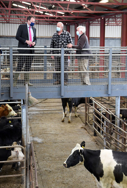 Charlie McConalogue (left) talking to Pat Rossiter, Cahir, and Tom Beary, Ballylooby, (right) during his visit to Cahir Mart, Co. Tipperary.  The CAP and climate change are the only issues farmers face when they visit Cahir Mart.  Photo: Denis Minihane