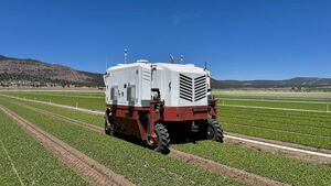 'Ten years ago this was science fiction': the rise of weedkilling robots