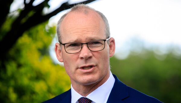 Foreign Affairs Minister Simon Coveney, who appointed       Katherine Zappone to her new role, even told a journalist 'not to       make a story' out of it. File picture: Gareth Chaney/Collins
