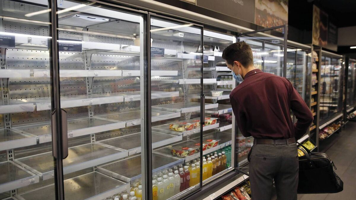 Consumer choice: As shoppers face empty shelves in the UK, could Ireland follow suit?