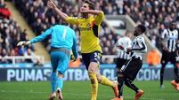 Poyet confident of completing Borini deal