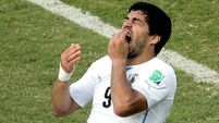 FIFA to investigate latest Suarez 'biting' allegation