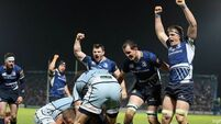 Leinster face Wasps in the European Rugby Champions Cup