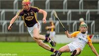 Rampant Wexford progress to Leinster semi against Dublin