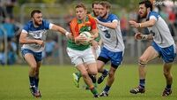 14-man Carlow come back to steal win from Waterford